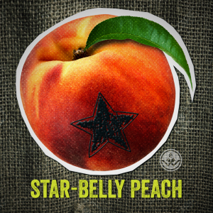 star-belly_peach